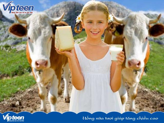 Uống sữa tươi giúp tăng chiều cao