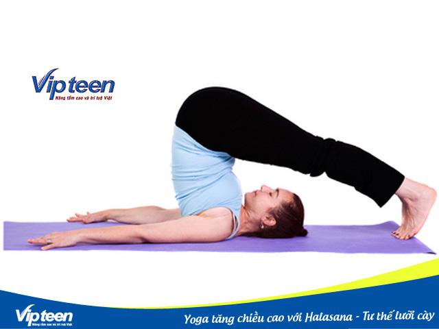 Halasana là tư thế Yoga giúp tăng chiều cao nhanh nhất