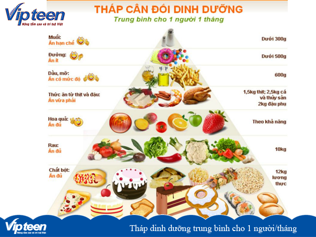 Tháp dinh dưỡng trung bình cho 1 người/tháng