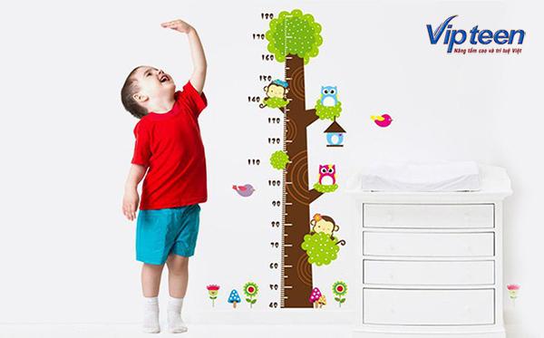 thực phẩm tăng chiều cao cho trẻ là gì