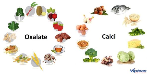 bổ sung canxi bằng thực phẩm có chứa nhiều oxalat