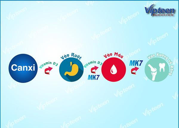 Bổ sung Canxi hiệu quả kèm Vitamin D3 và MK7