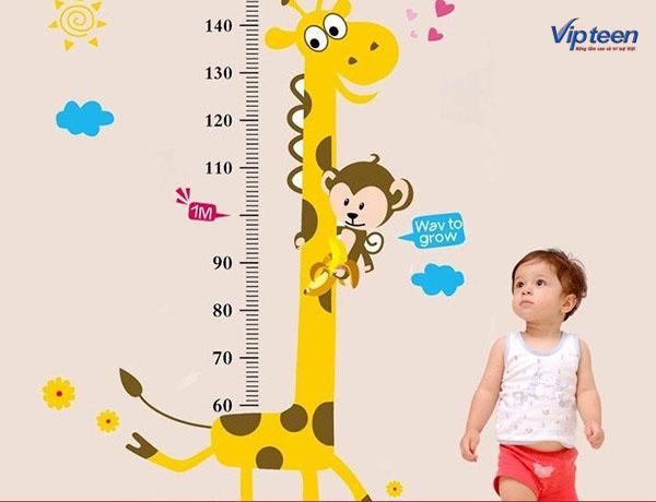 Bổ sung Canxi có tác dụng tăng chiều cao cho trẻ
