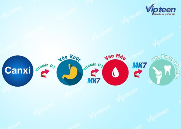 Hỗn hợp Canxi nano, Vitamin D3 và MK7