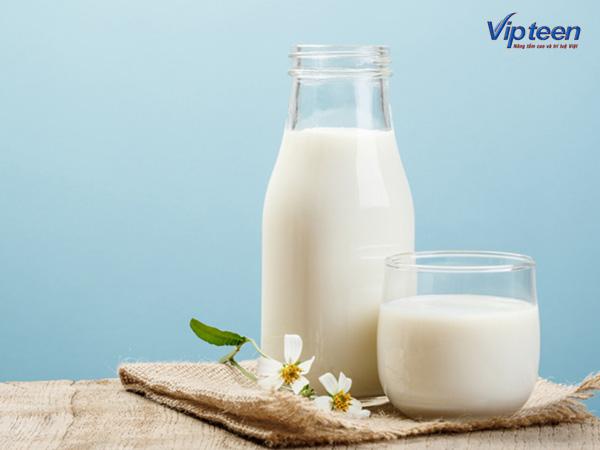Sữa bò giúp tăng chiều cao tuổi 18